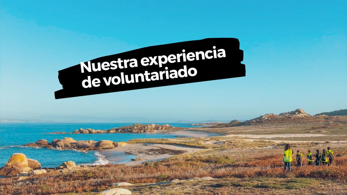 Nuestra experiencia de voluntariado ambiental en Galicia